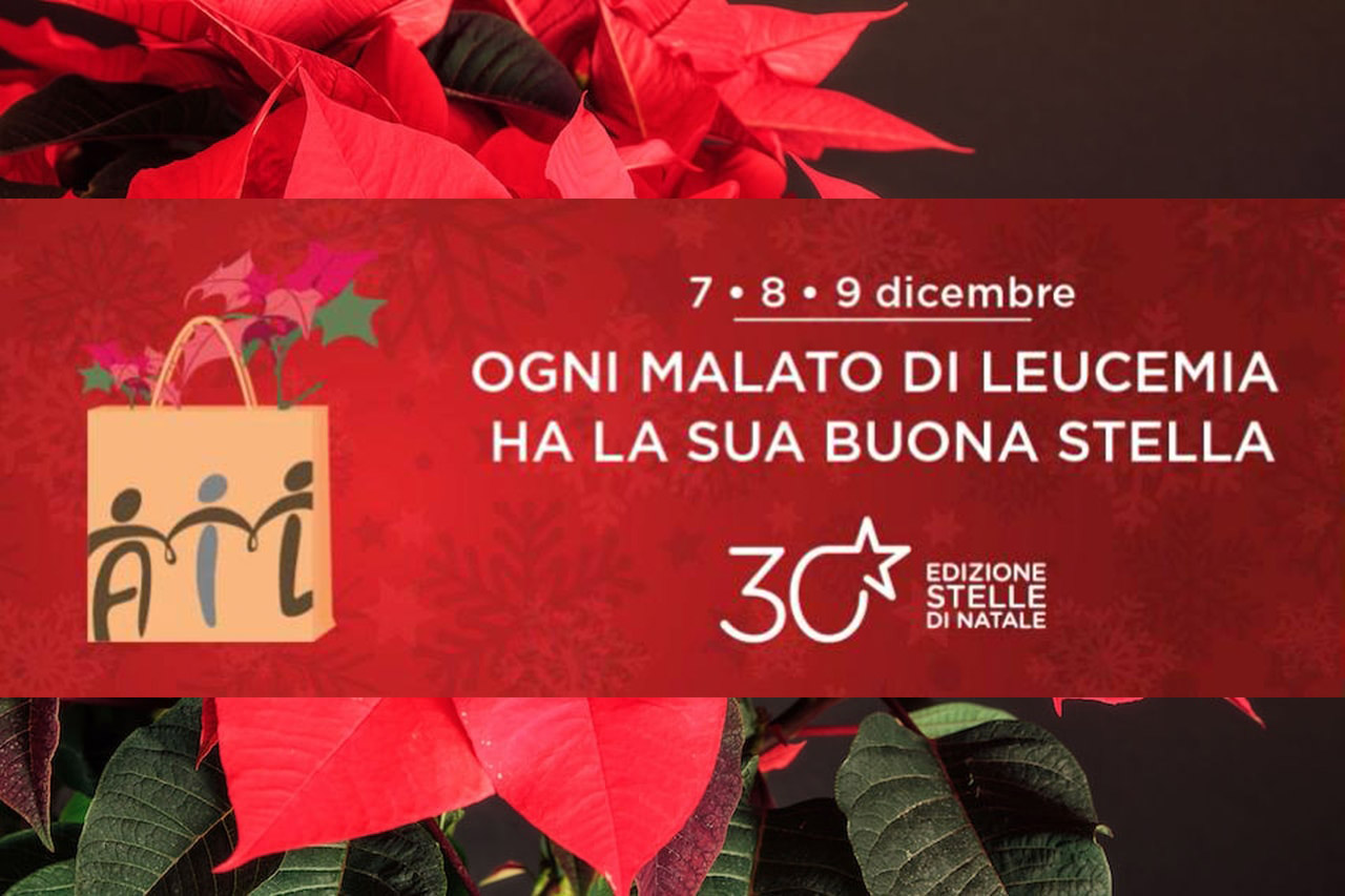 Stelle di natale dell 39 ail radio company easy for Stelle di natale ail 2016